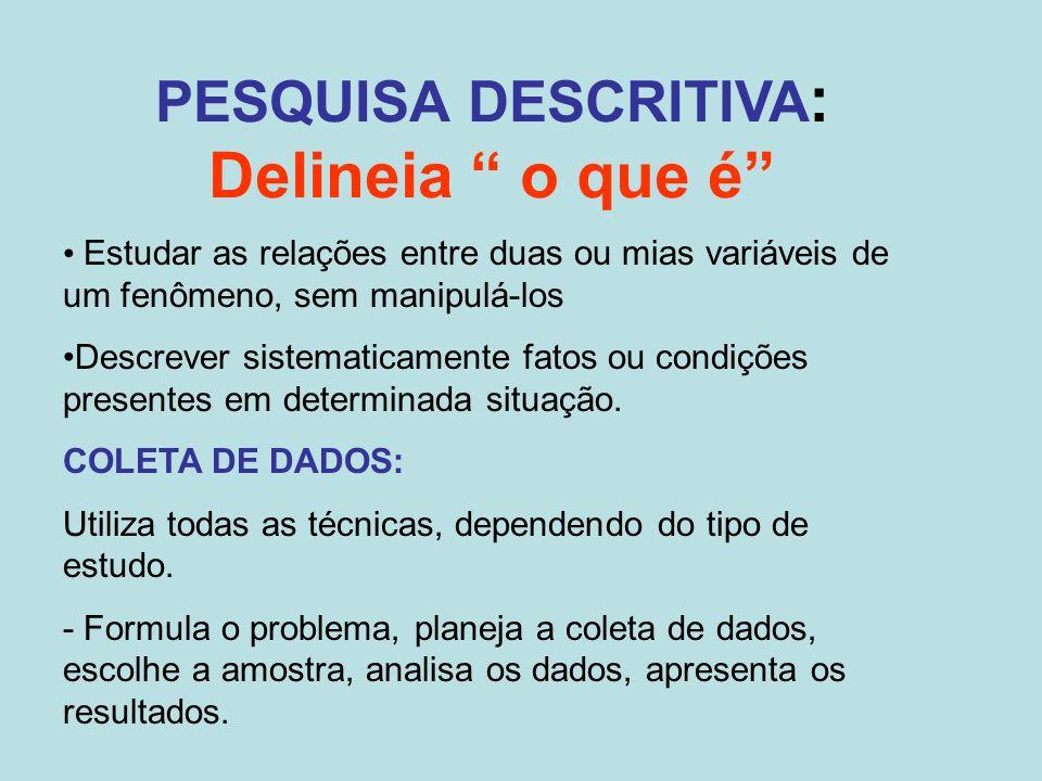 Delineia o que é PESQUISA DESCRITIVA: