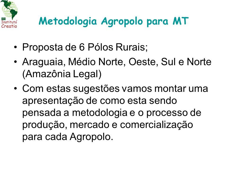 Metodologia Agropolo para MT