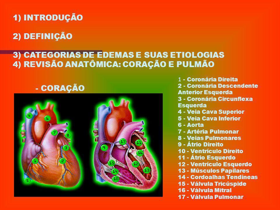 3) CATEGORIAS DE EDEMAS E SUAS ETIOLOGIAS