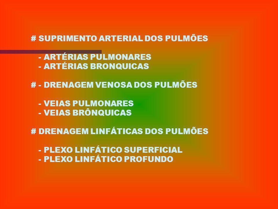 # SUPRIMENTO ARTERIAL DOS PULMÕES
