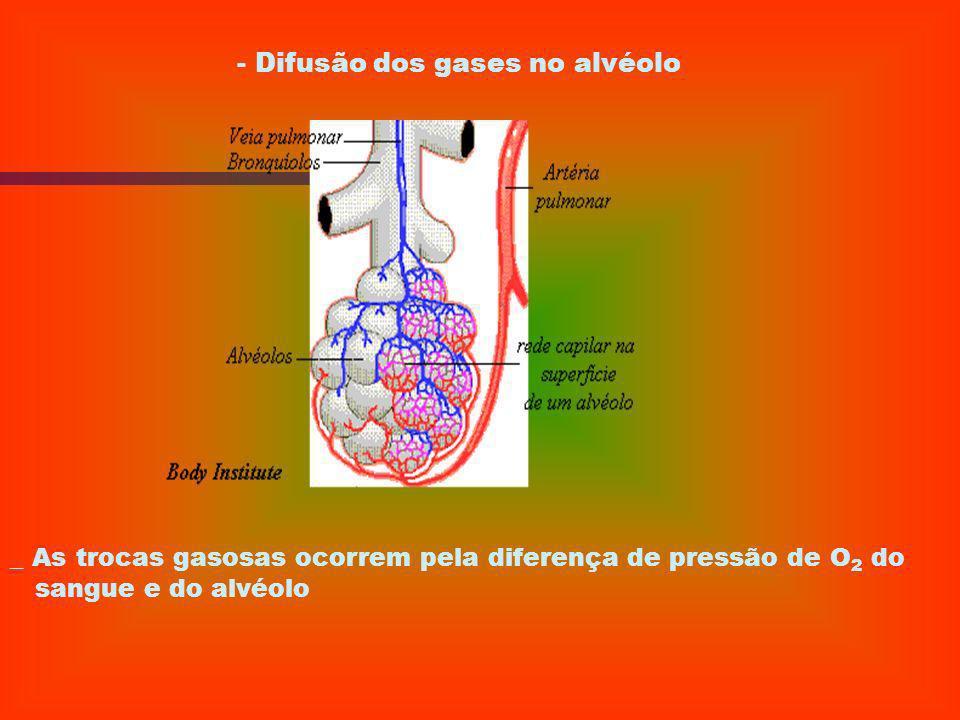 - Difusão dos gases no alvéolo