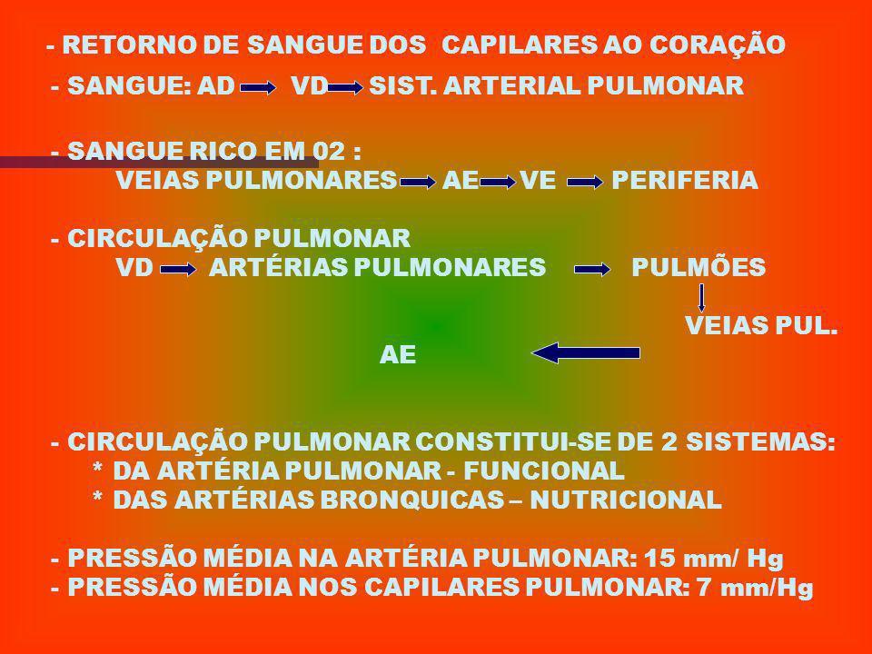 - RETORNO DE SANGUE DOS CAPILARES AO CORAÇÃO