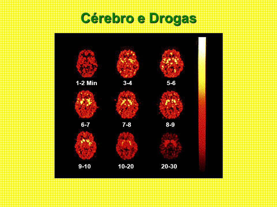Cérebro e Drogas 1-2 Min 3-4 5-6 6-7 7-8 8-9 9-10 10-20 20-30