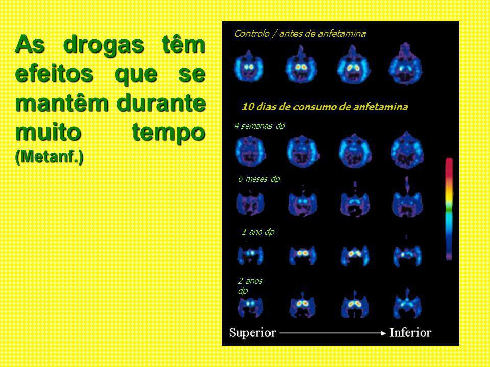 As drogas têm efeitos que se mantêm durante muito tempo (Metanf.)