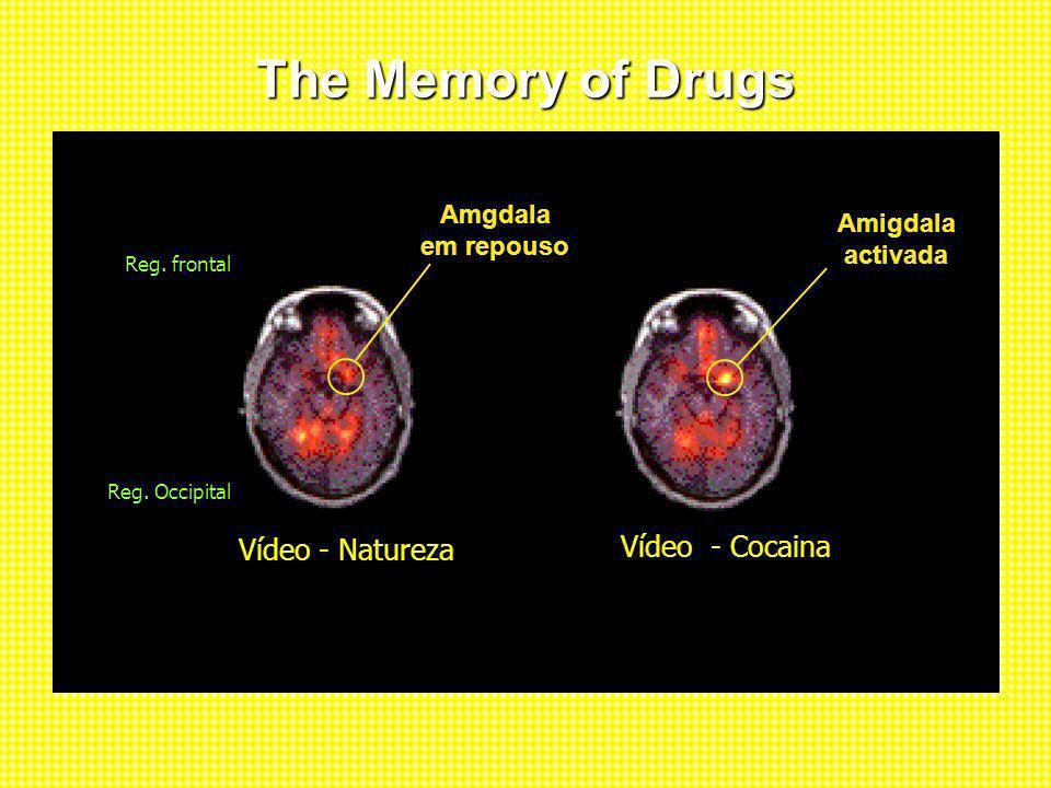 The Memory of Drugs Vídeo - Natureza Nature Video Vídeo - Cocaina