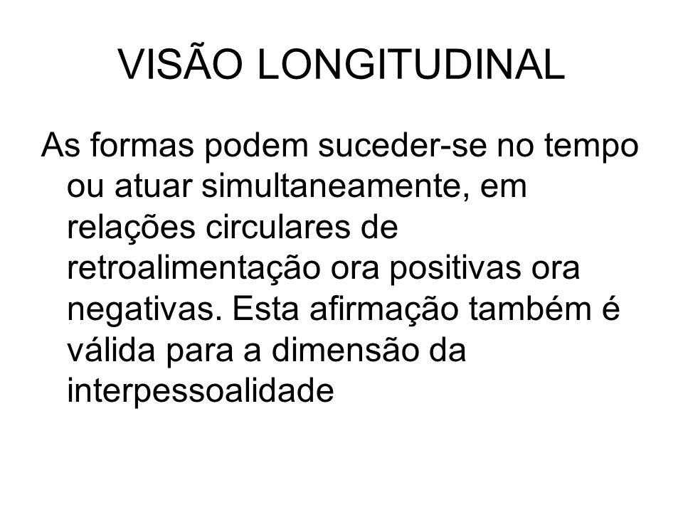 VISÃO LONGITUDINAL