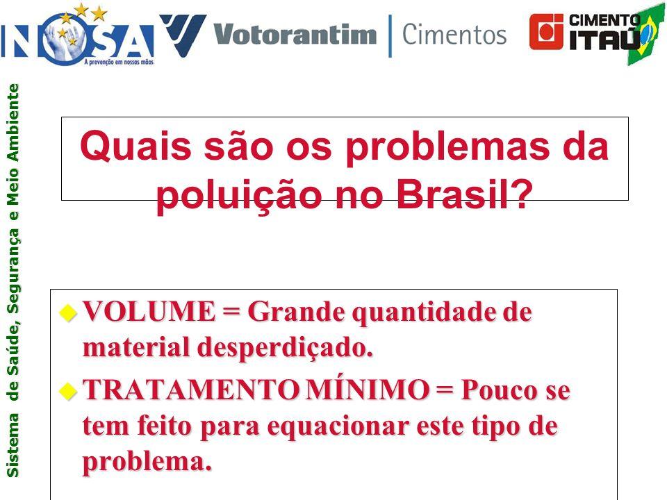 Quais são os problemas da poluição no Brasil