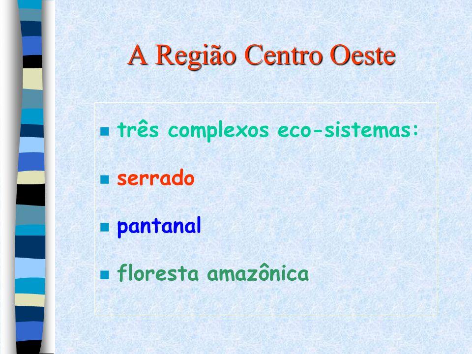 A Região Centro Oeste três complexos eco-sistemas: serrado pantanal