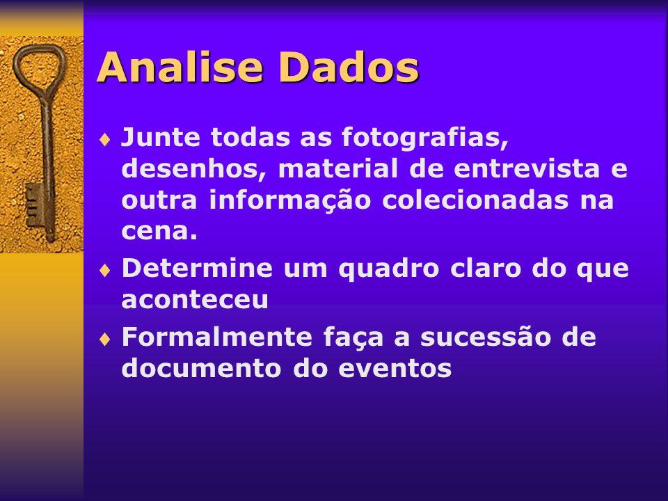 Analise Dados Junte todas as fotografias, desenhos, material de entrevista e outra informação colecionadas na cena.