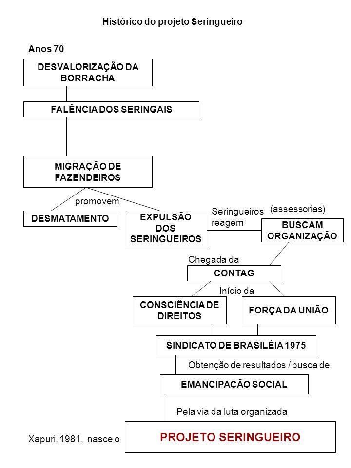 PROJETO SERINGUEIRO Histórico do projeto Seringueiro Anos 70