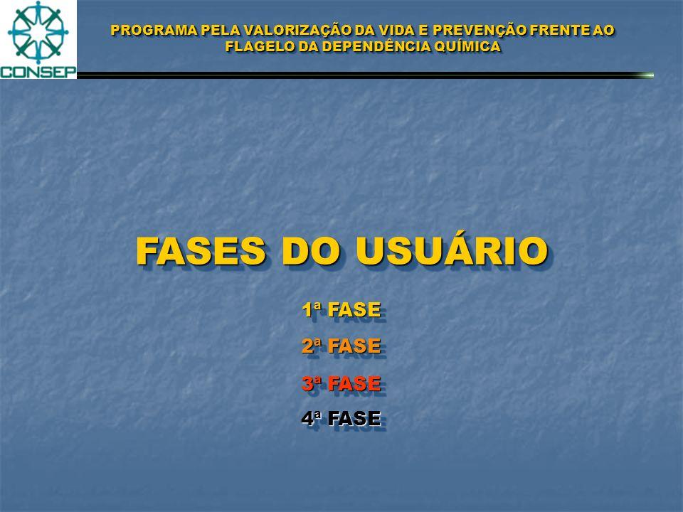 FASES DO USUÁRIO 1ª FASE 2ª FASE 3ª FASE 4ª FASE