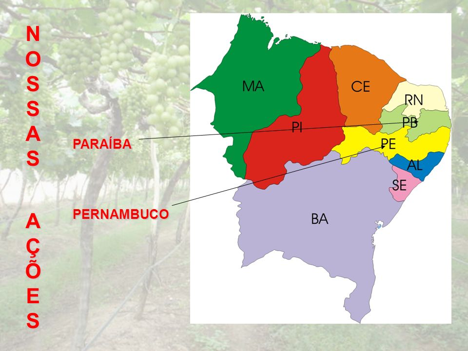 NOSSAS AÇÕES PARAÍBA PERNAMBUCO