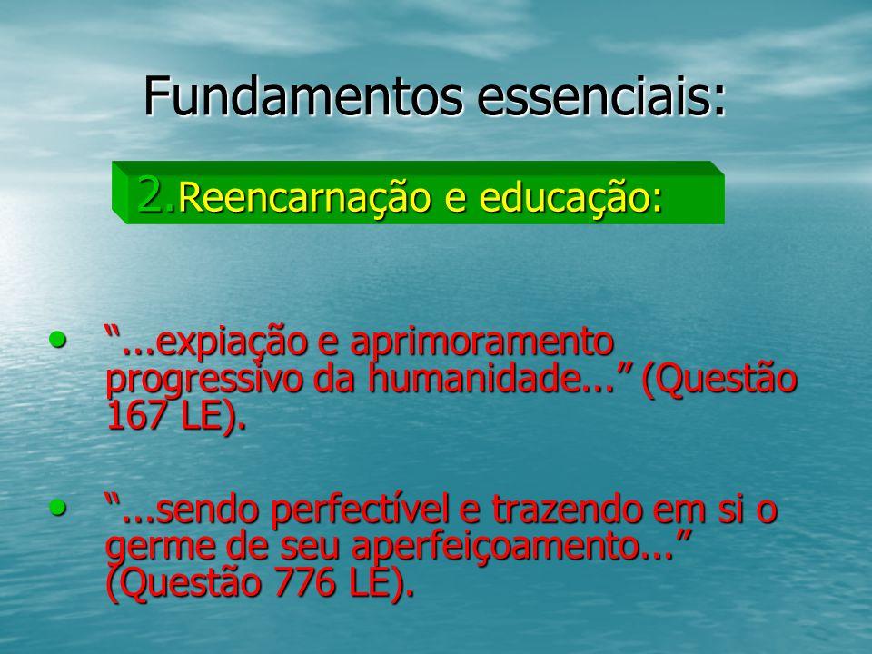 Fundamentos essenciais: