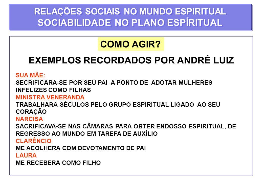 SOCIABILIDADE NO PLANO ESPÍRITUAL EXEMPLOS RECORDADOS POR ANDRÉ LUIZ