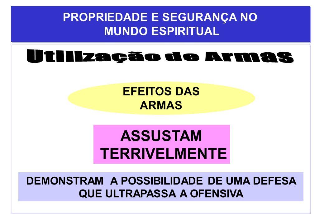 Utilização de Armas ASSUSTAM TERRIVELMENTE PROPRIEDADE E SEGURANÇA NO
