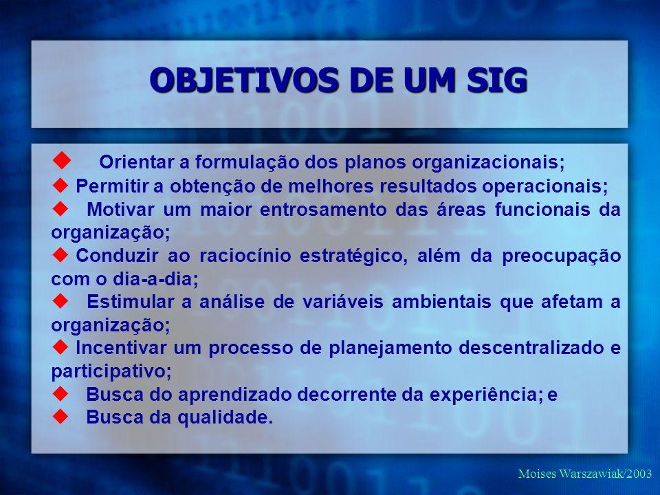 OBJETIVOS DE UM SIG Orientar a formulação dos planos organizacionais;