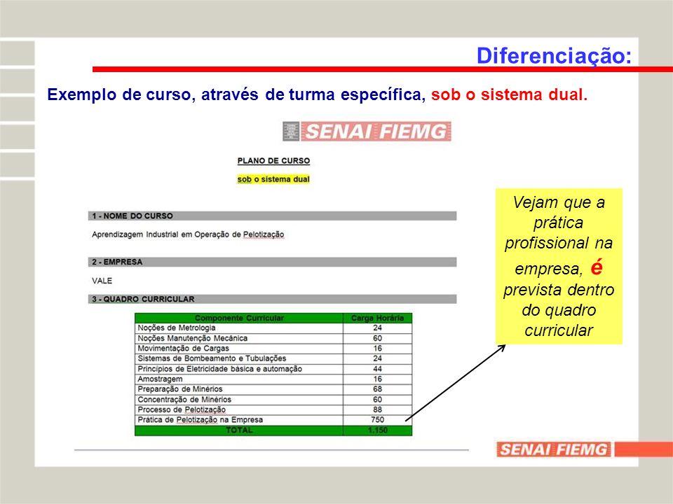 Diferenciação:Exemplo de curso, através de turma específica, sob o sistema dual.
