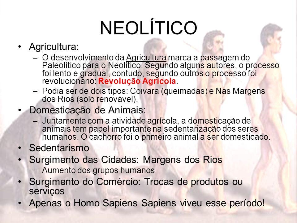 NEOLÍTICO Agricultura: Domesticação de Animais: Sedentarismo