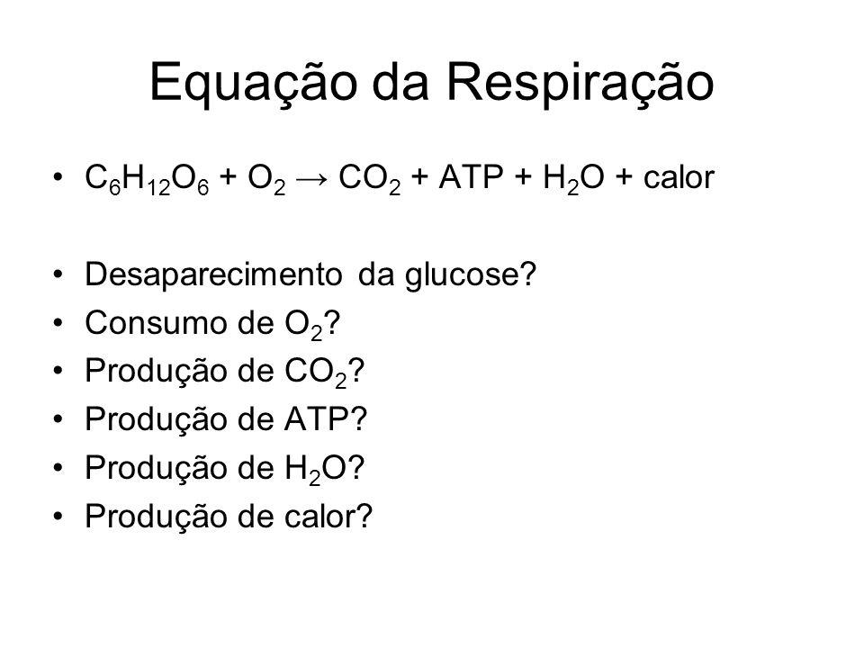Equação da Respiração C6H12O6 + O2 → CO2 + ATP + H2O + calor