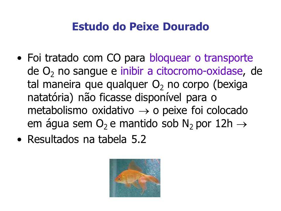 Estudo do Peixe Dourado