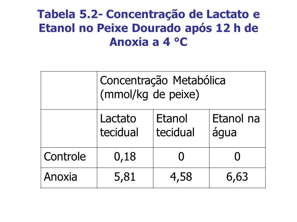 Tabela 5.2- Concentração de Lactato e Etanol no Peixe Dourado após 12 h de Anoxia a 4 °C