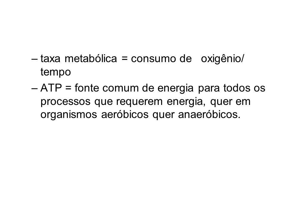 taxa metabólica = consumo de oxigênio/ tempo