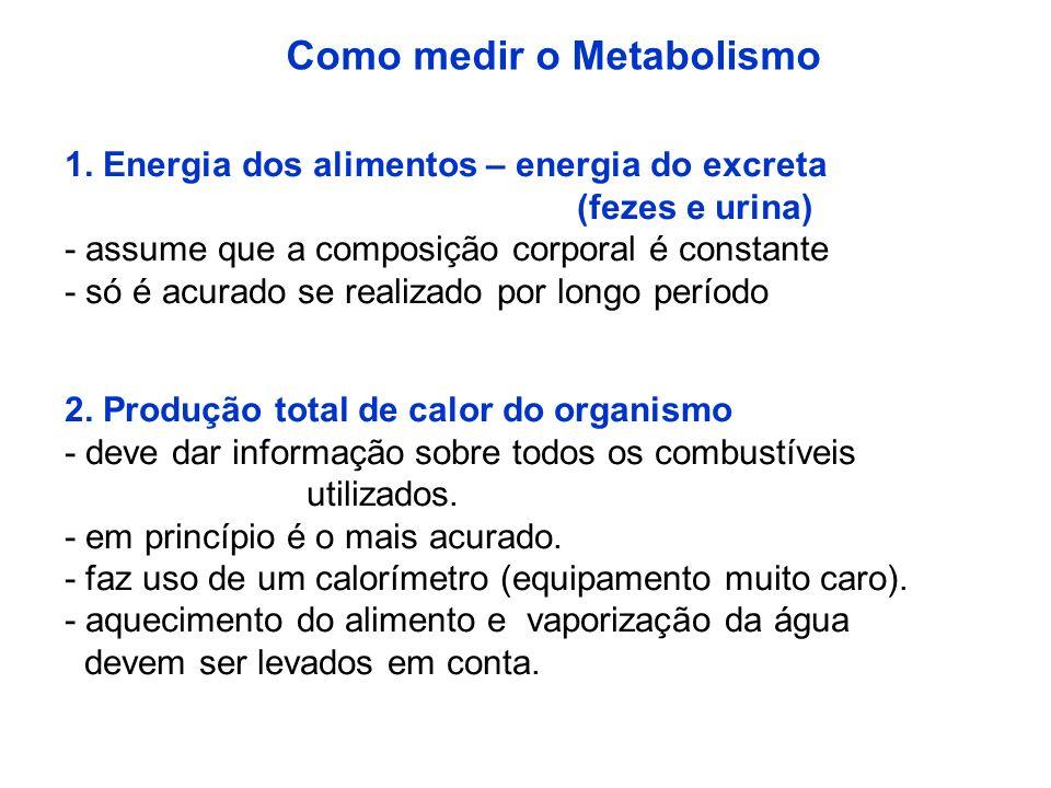 Como medir o Metabolismo