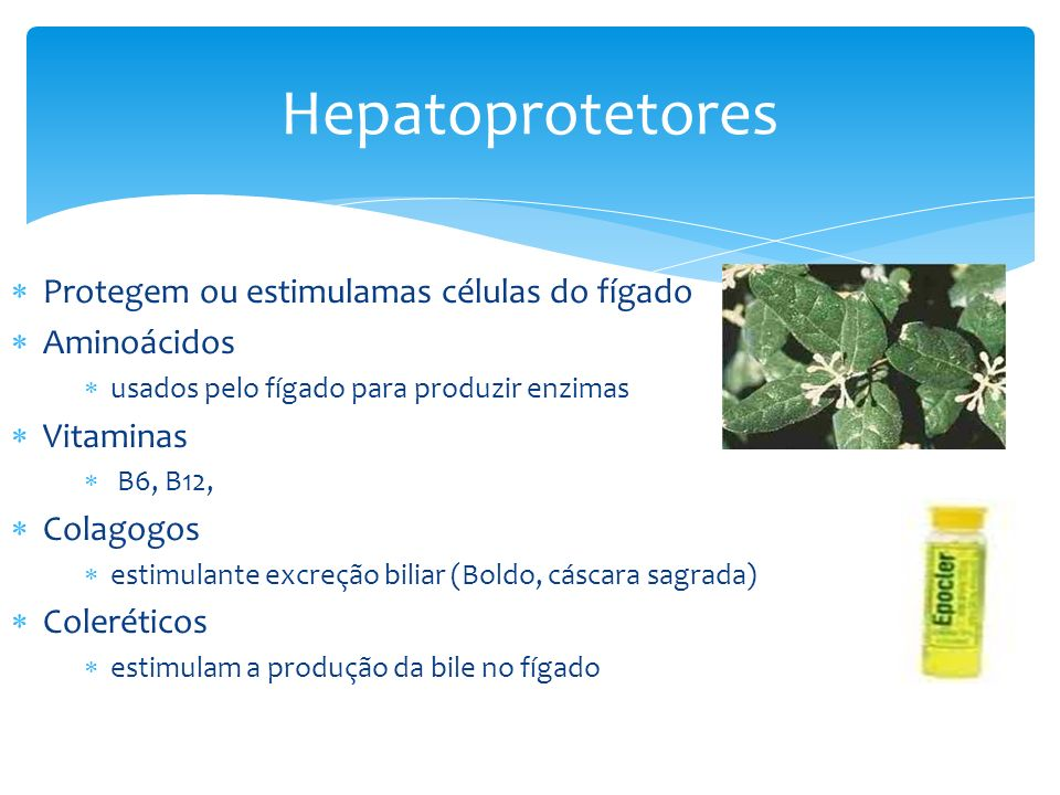 Hepatoprotetores Protegem ou estimulamas células do fígado Aminoácidos