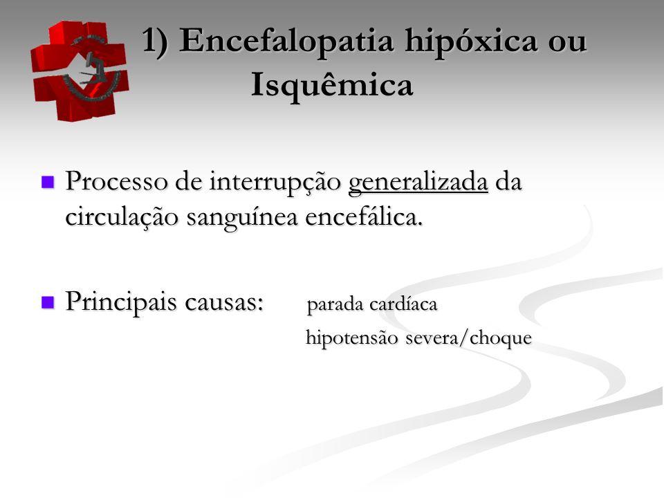 1) Encefalopatia hipóxica ou Isquêmica