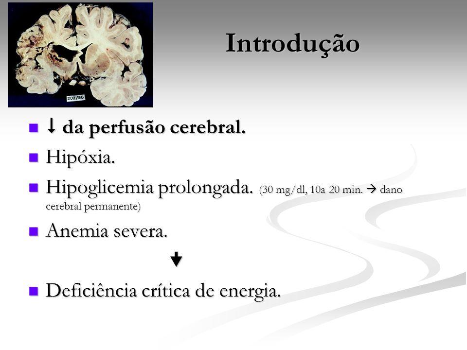Introdução  da perfusão cerebral. Hipóxia.