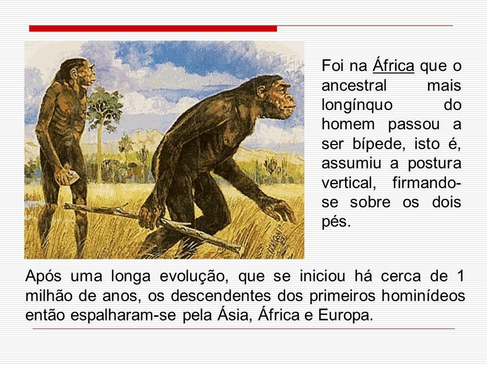 Foi na África que o ancestral mais longínquo do homem passou a ser bípede, isto é, assumiu a postura vertical, firmando-se sobre os dois pés.