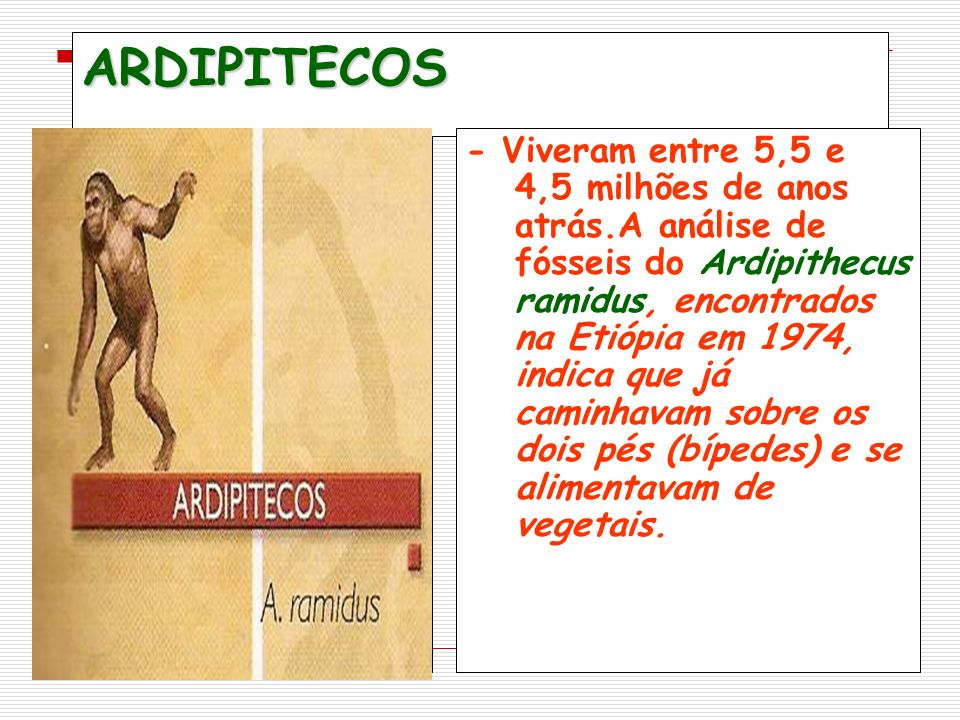 ARDIPITECOS