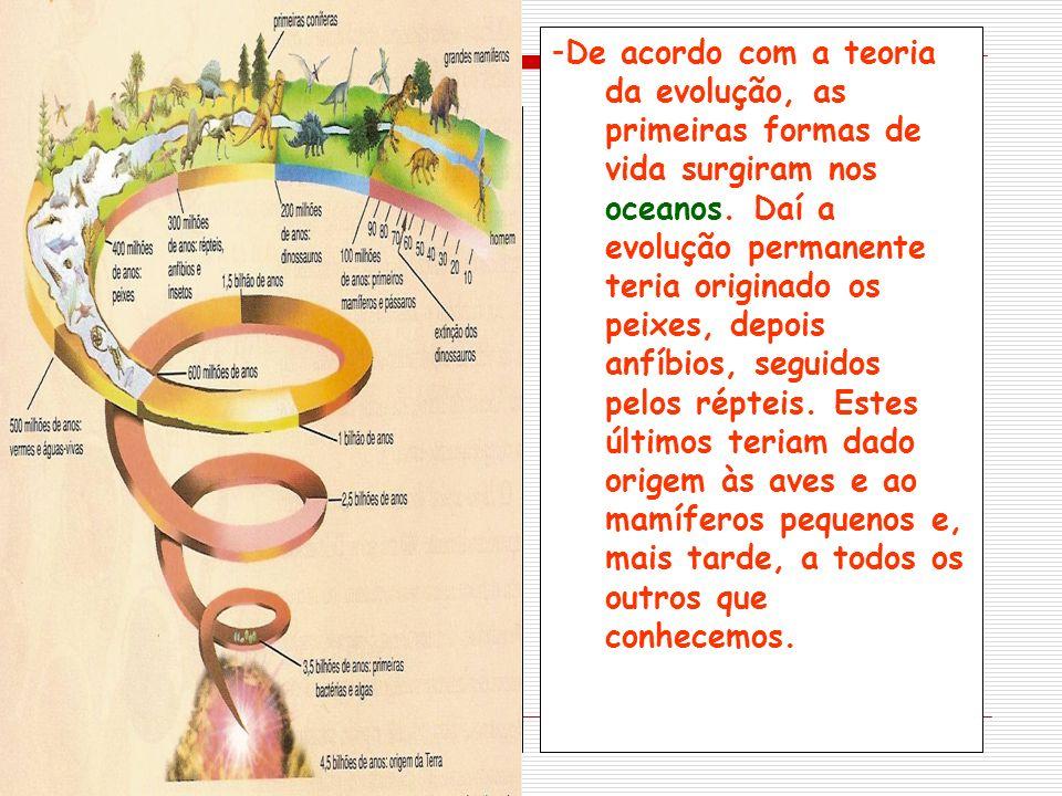 -De acordo com a teoria da evolução, as primeiras formas de vida surgiram nos oceanos.