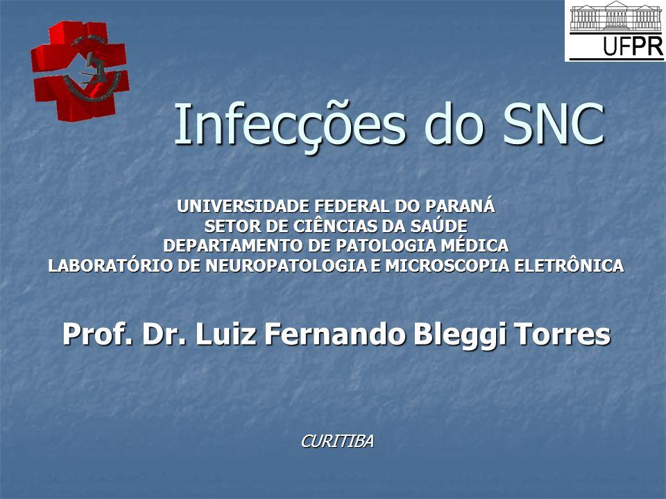 Infecções do SNC Prof. Dr. Luiz Fernando Bleggi Torres