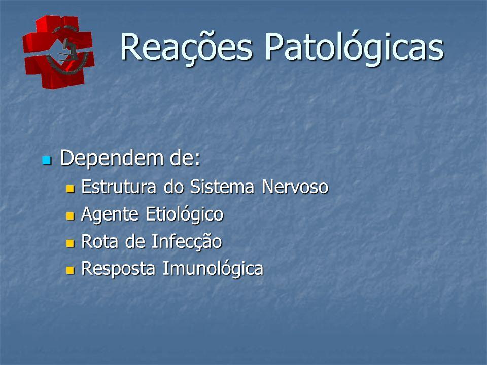 Reações Patológicas Dependem de: Estrutura do Sistema Nervoso
