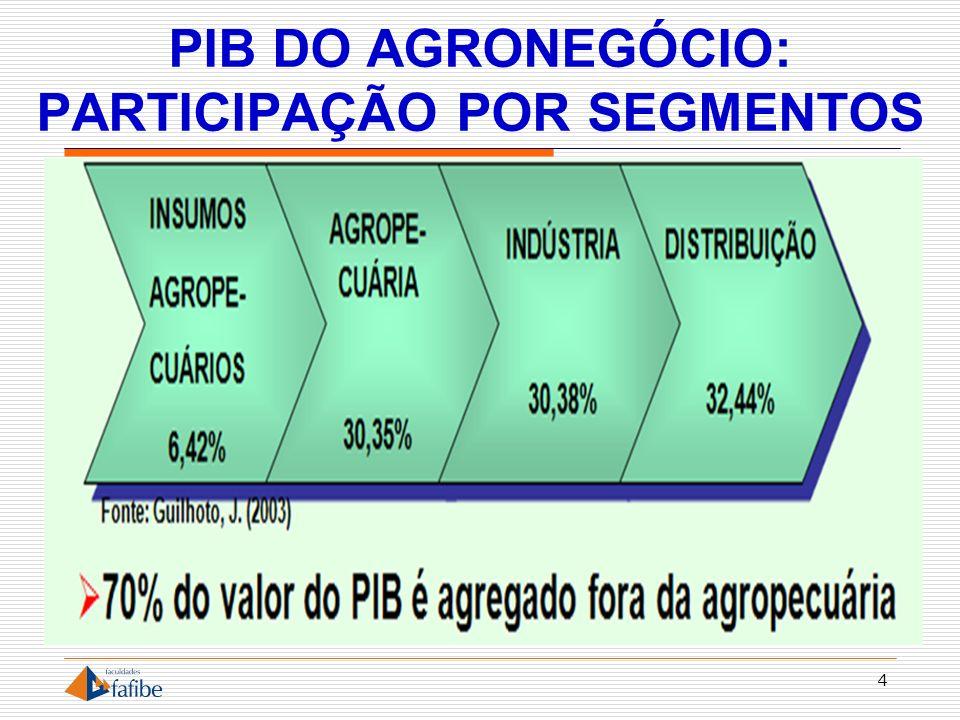 PIB DO AGRONEGÓCIO: PARTICIPAÇÃO POR SEGMENTOS
