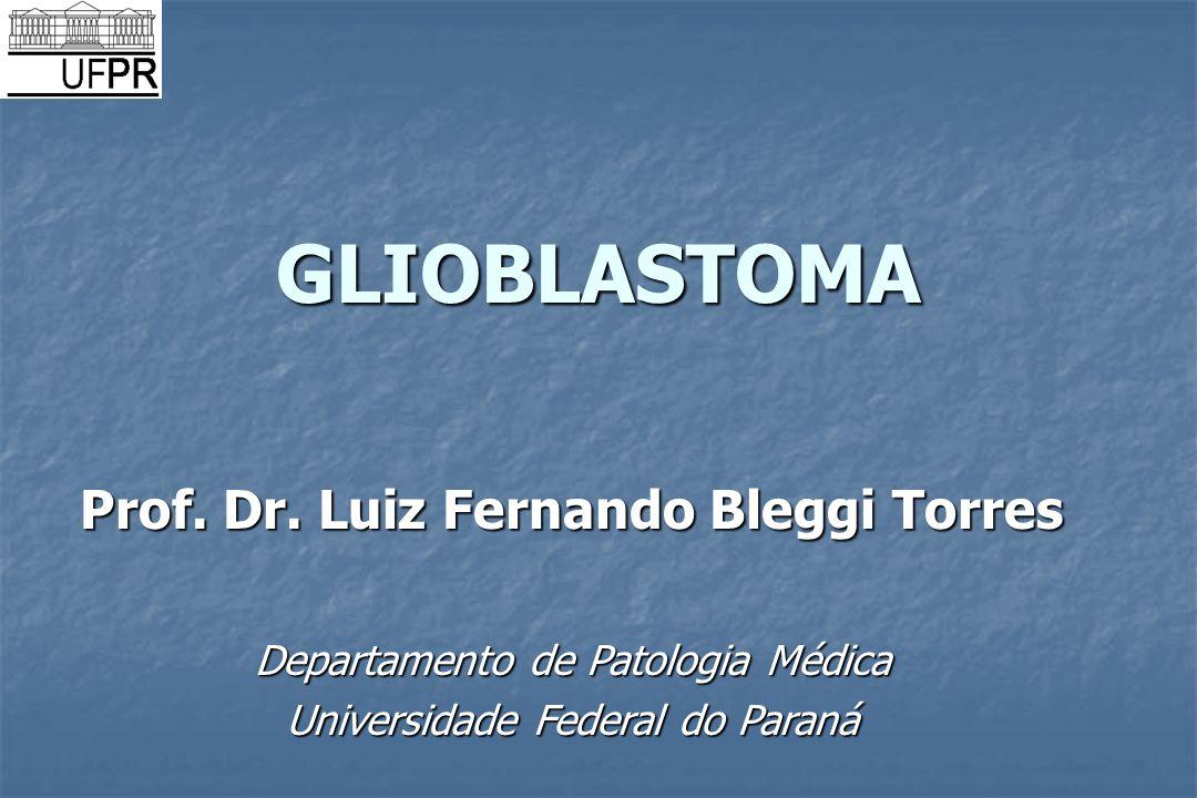 Prof. Dr. Luiz Fernando Bleggi Torres