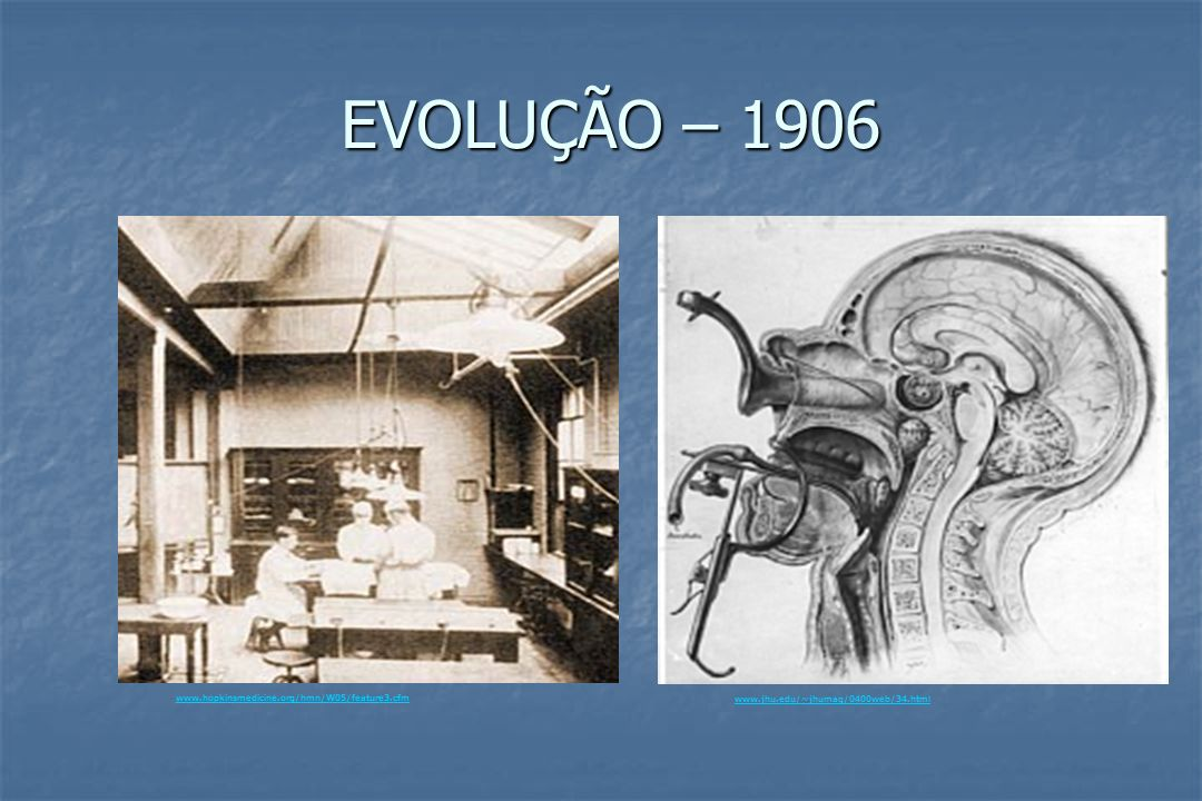 EVOLUÇÃO – 1906 www.jhu.edu/~jhumag/0400web/34.html