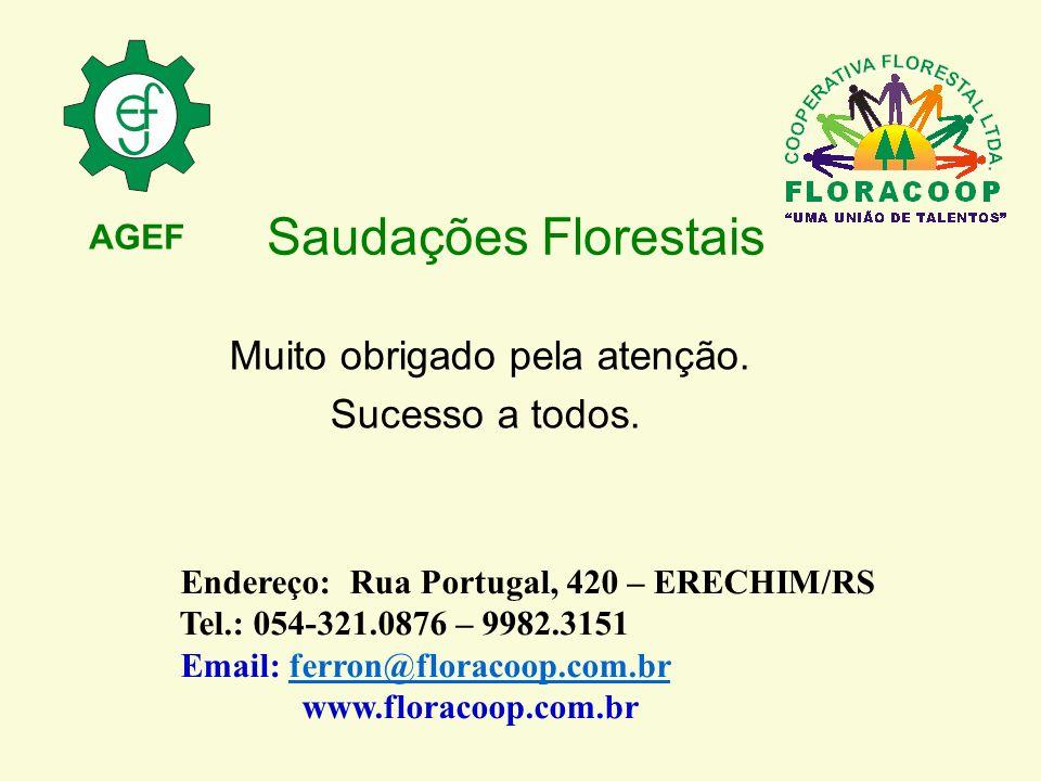 Saudações Florestais Muito obrigado pela atenção. Sucesso a todos.