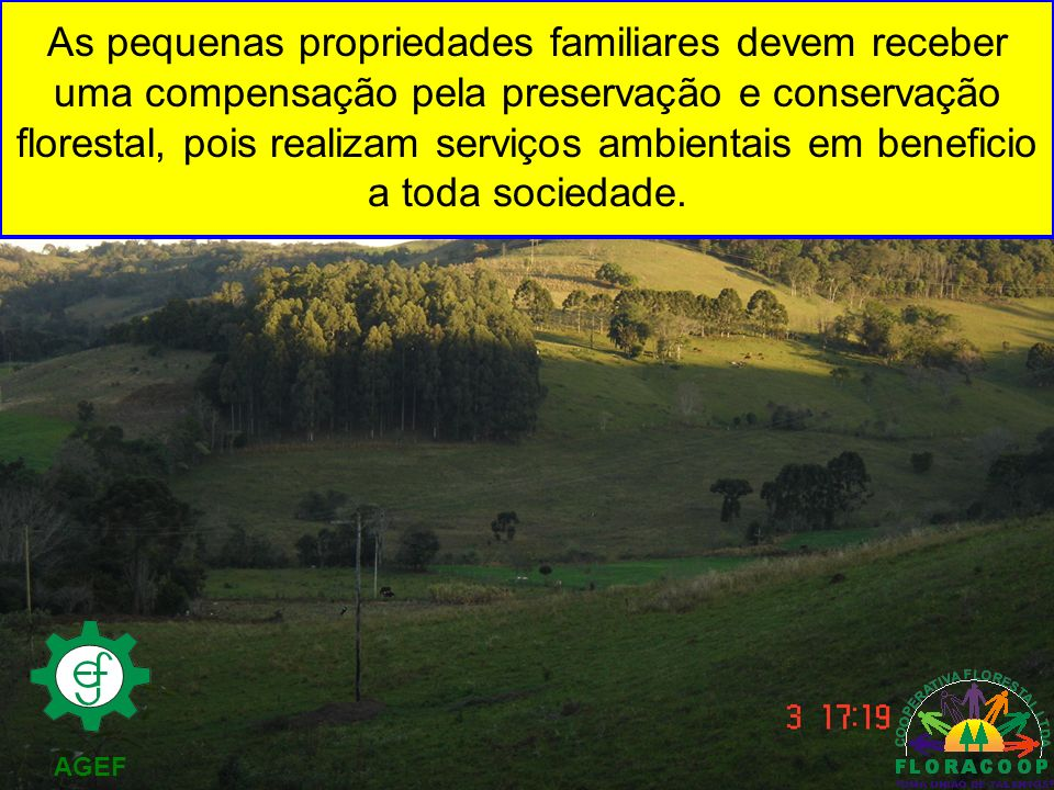As pequenas propriedades familiares devem receber uma compensação pela preservação e conservação florestal, pois realizam serviços ambientais em beneficio a toda sociedade.