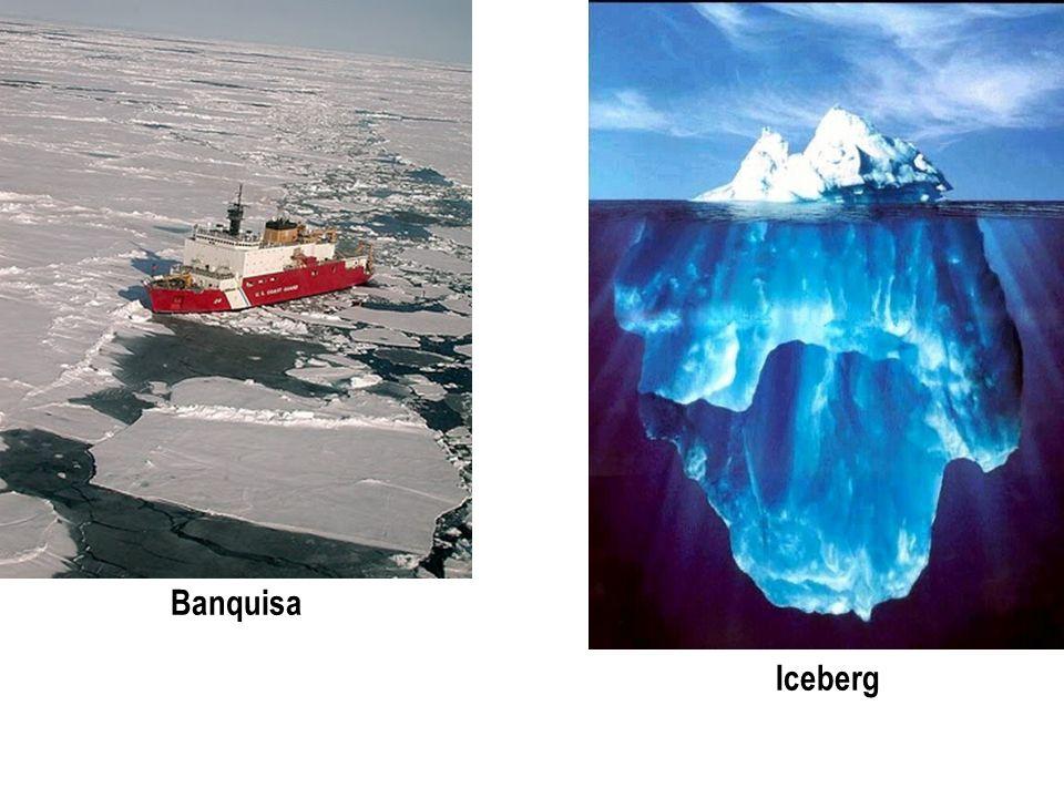 Banquisa Iceberg