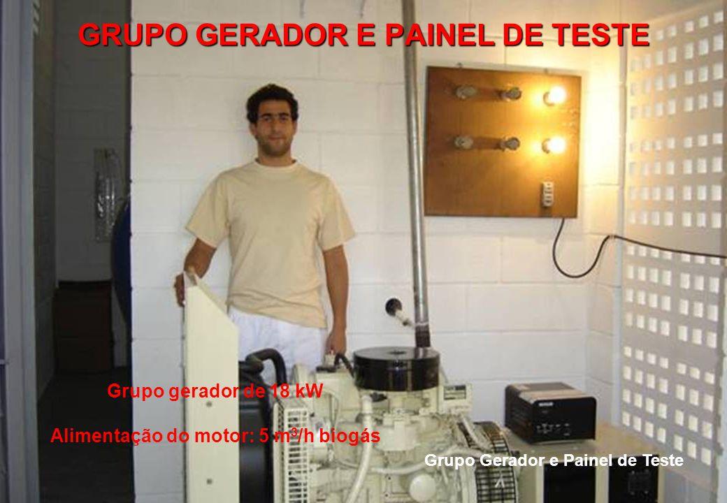 GRUPO GERADOR E PAINEL DE TESTE