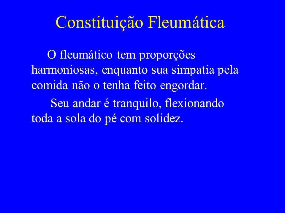 Constituição Fleumática