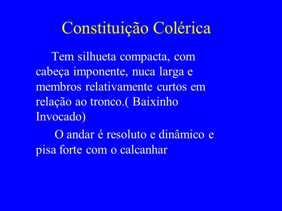 Constituição Colérica