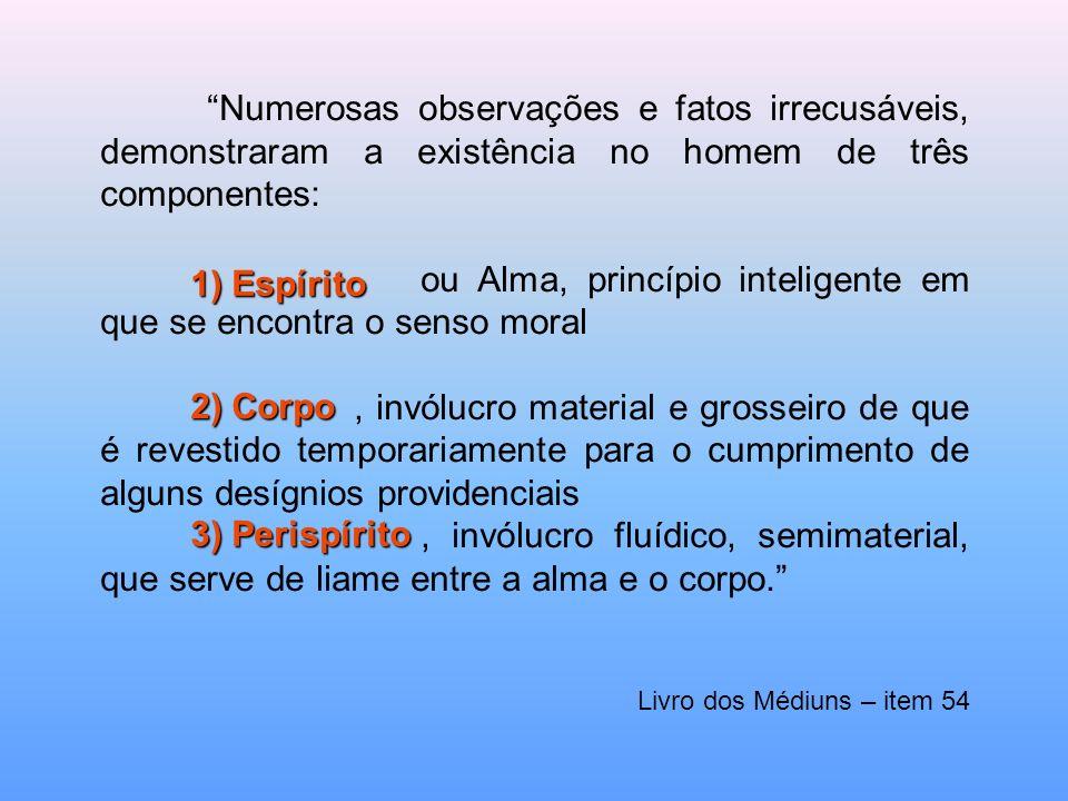 ou Alma, princípio inteligente em que se encontra o senso moral