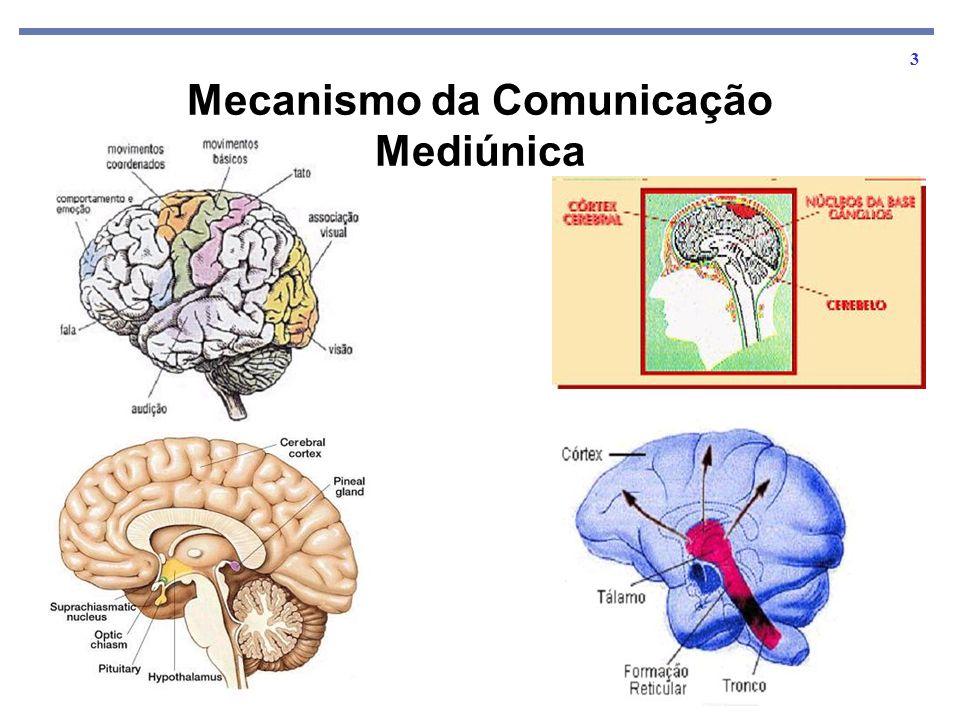 Mecanismo da Comunicação Mediúnica