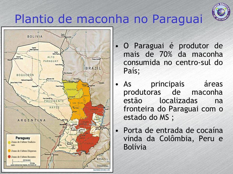 Plantio de maconha no Paraguai