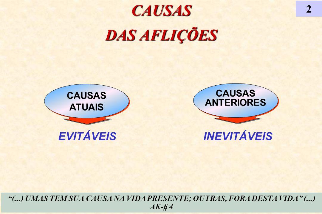 CAUSAS DAS AFLIÇÕES 2 EVITÁVEIS INEVITÁVEIS CAUSAS CAUSAS ANTERIORES