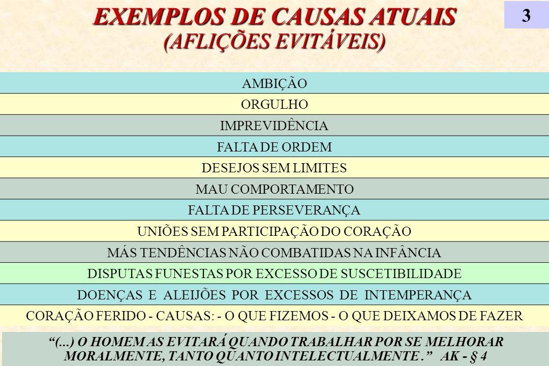 EXEMPLOS DE CAUSAS ATUAIS (AFLIÇÕES EVITÁVEIS)