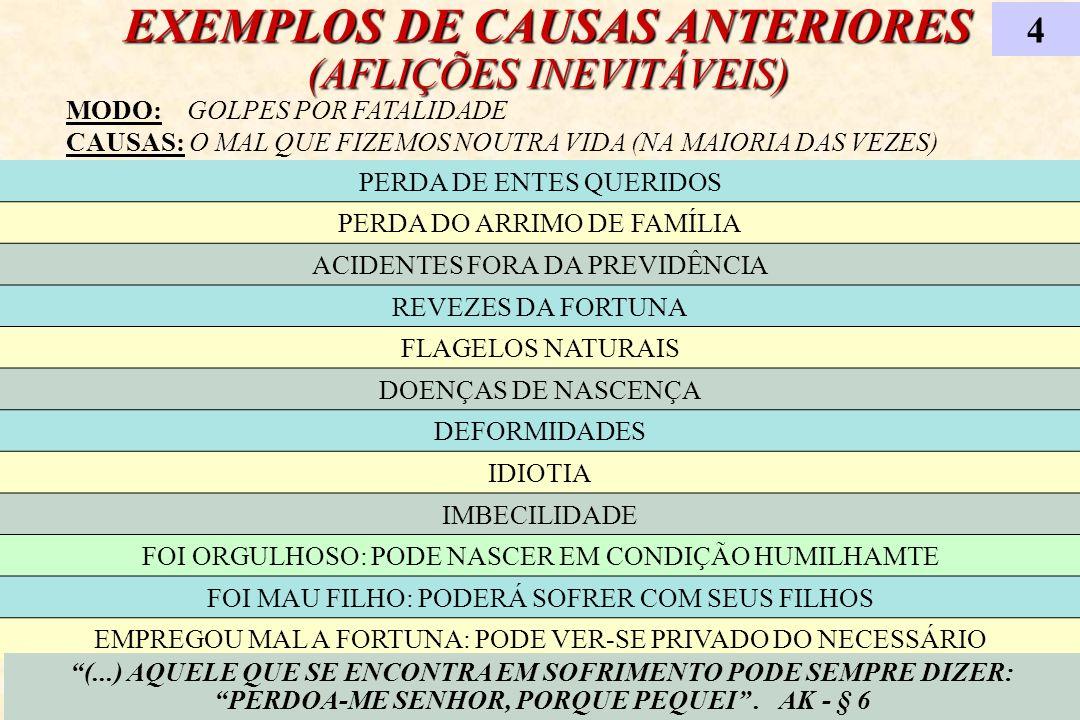 EXEMPLOS DE CAUSAS ANTERIORES (AFLIÇÕES INEVITÁVEIS)